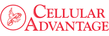Cellular Advantage Logo