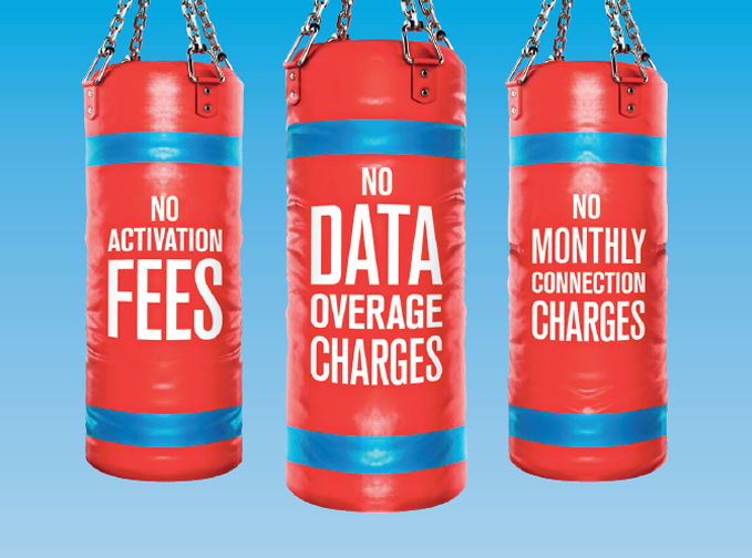 No Hidden Fees Punching Bags